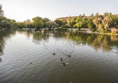 Lago Parque París